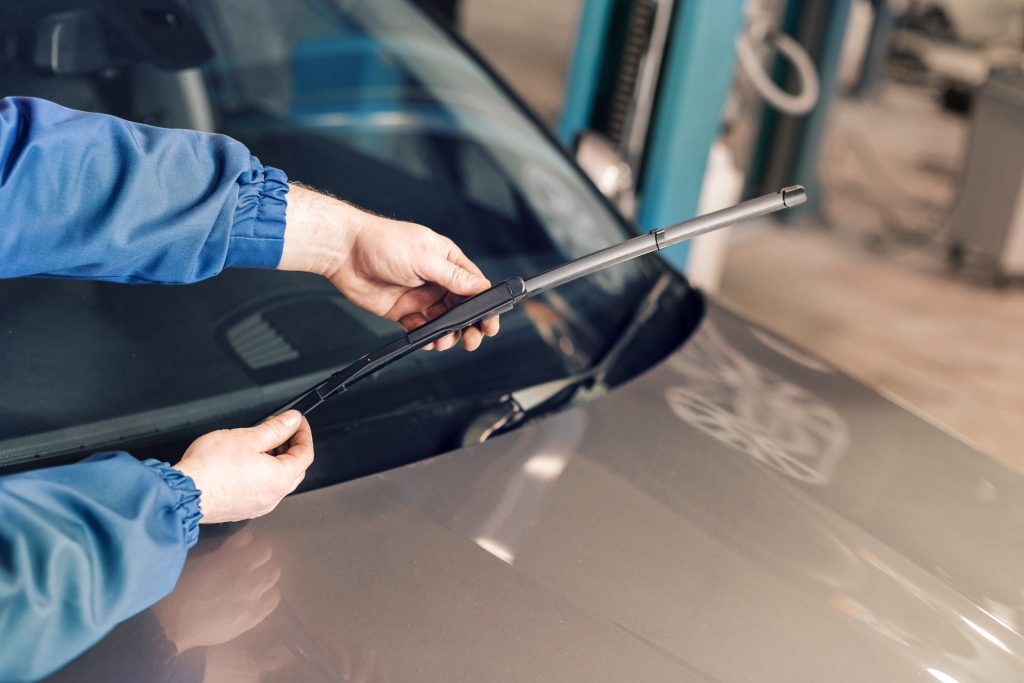 5 Ways To Prepare Your Windscreen For Autumn myWindscreen
